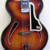 Thumbnail image for 1955 Reinl Archtop